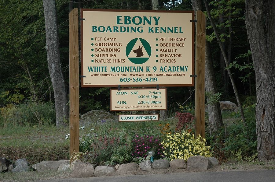 ebony boarding kennel college for pets
